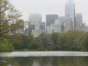 Lees meer over het artikel Manhattan vanuit central park New York