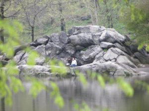 Lees meer over het artikel Central park New York