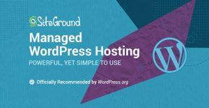 Lees meer over het artikel WordPress Hosting